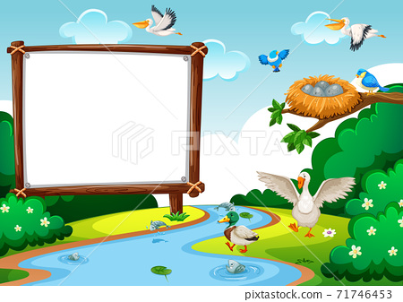 Wooden blank banner in the forest scene 71746453