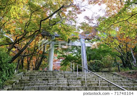 福岡縣大正府市的一個熱門景點 71748104