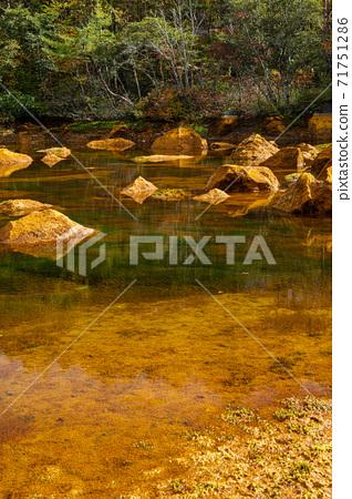 Copper swamp and Mt. Bandai, Fukushima Prefecture 71751286