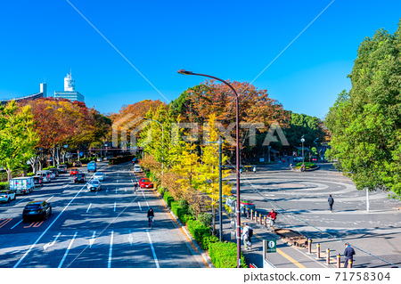 Autumn leaves around the entrance of Yoyogi Park in autumn in Tokyo 71758304