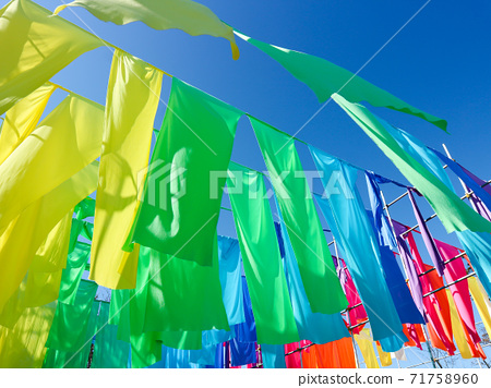 Biwako Hakodateyama Rainbow Curtain 71758960