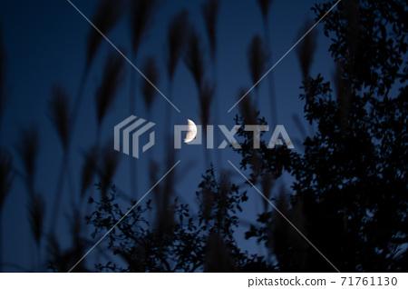 다 카오산 정상에서 본 秋夜의 상현달의 달 71761130