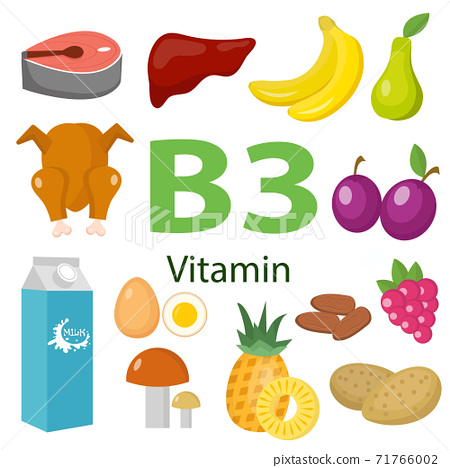 Vitamins and Minerals foods .Vector set of vitamin rich foods. Vitamin B3 meat, spinach, poultry, fish, liver, mushrooms, potatoes and peanuts 71766002