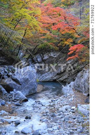 11月秩父127 Mochijo Jiro Momiji,Nakatsukyo秋葉,奧秩父 71769922