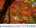 秋天的颜色有马温泉,瑞凤寺公园 71781886