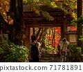 秋天的颜色有马温泉,瑞凤寺公园 71781891