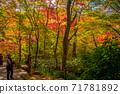 秋天的颜色有马温泉,瑞凤寺公园 71781892
