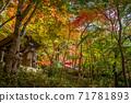 秋天的颜色有马温泉,瑞凤寺公园 71781893