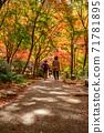 秋天的颜色有马温泉,瑞凤寺公园 71781895