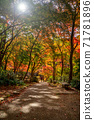 秋天的颜色有马温泉,瑞凤寺公园 71781896