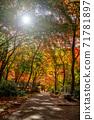 秋天的颜色有马温泉,瑞凤寺公园 71781897
