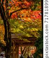 秋天的颜色有马温泉,瑞凤寺公园 71781899