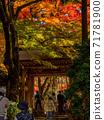 秋天的颜色有马温泉,瑞凤寺公园 71781900