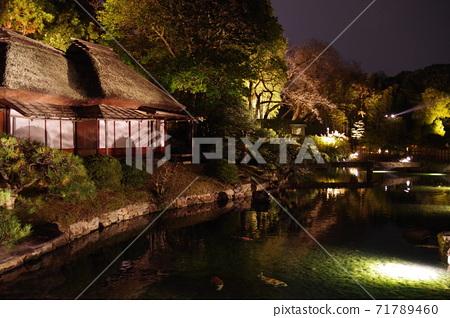 Korakuen Autumn Fantasy Garden 71789460