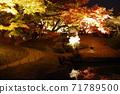 고 라쿠엔 가을의 환상 정원 71789500