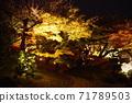 고 라쿠엔 가을의 환상 정원 71789503
