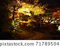 고 라쿠엔 가을의 환상 정원 71789504