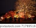 고 라쿠엔 가을의 환상 정원 71789516