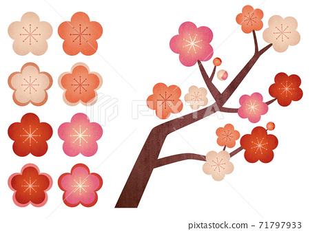 Graphic illustration of plum blossoms (texture) 71797933