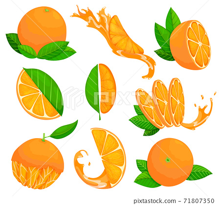 Collection of fresh ripe oranges. Set with whole fruit and a half, with leaves and without. Juice advertising. Vector illustration in a flat style 71807350