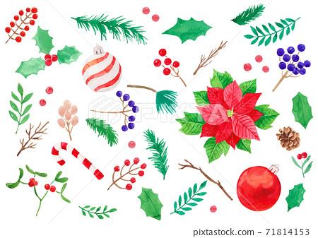 聖誕節水彩植物圖案 71814153