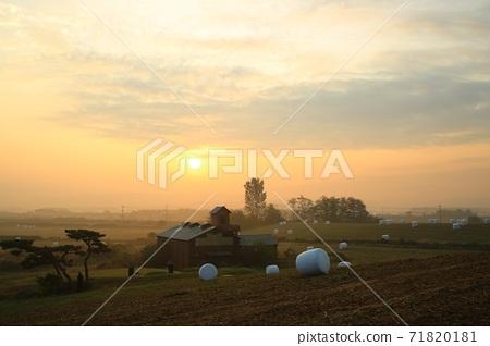 목장의아침빛,안성목장 71820181