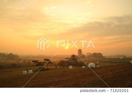 목장의아침빛,안성목장 71820201