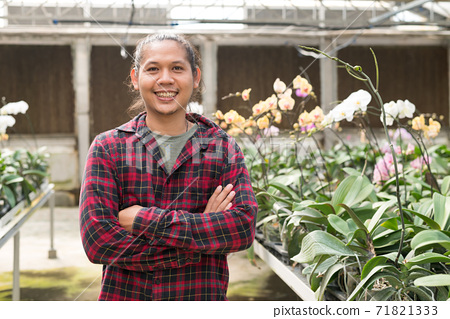 Young man Asian farmer smiling and arms crossed in Phalaenopsis orchid greenhouse 71821333