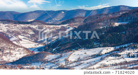 mountainous countryside on a sunny day. late winter scenery or beginning of spring. melting snow and leafless trees on the hills. village in the distant valley. transcarpathia, ukraine 71824020