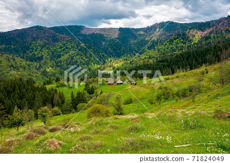 mountain rural landscape in spring. forest and orchard on the steep hills. scenery of abandoned Kuzsbej village. two houses in the distance. cloudy sky 71824049