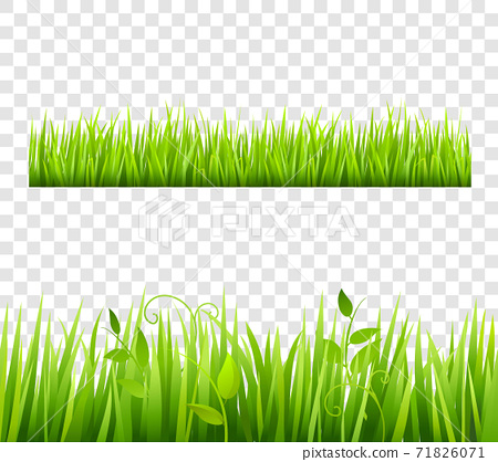 Grass Border Tileable Transparent 71826071