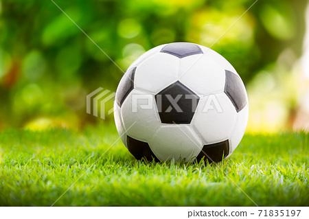 Soccer ball 71835197