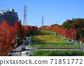 Minamitama山脊主路楓樹11月的Inagi 349秋葉 71851772