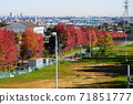 11月Inagi 344楓葉秋葉/ Minamitama山脊主要道路 71851777
