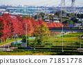 Minamitama山脊主路的11月Inagi 343楓樹的秋葉 71851778