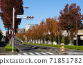 11月Inagi 339白楊樹襯裡的秋葉和Wakabadai(無電柱) 71851782