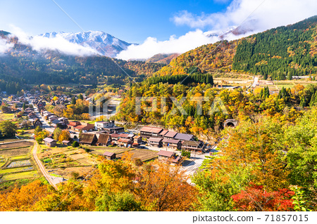 《Gifu Prefecture》 Autumn Shirakawa-go, autumn leaves gassho-zukuri village 71857015