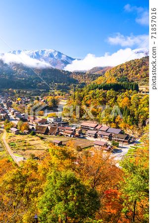 《Gifu Prefecture》 Autumn Shirakawa-go, autumn leaves gassho-zukuri village 71857016