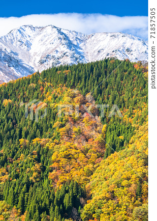 《岐阜縣》琉球山脈的三層秋葉白川鄉的景色 71857505