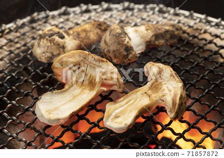 烤松蘑菇七輪木炭燒烤爐 71857872