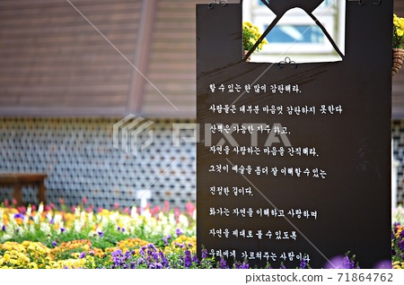 Beautiful Garden, Suncheon Bay National Garden 71864762
