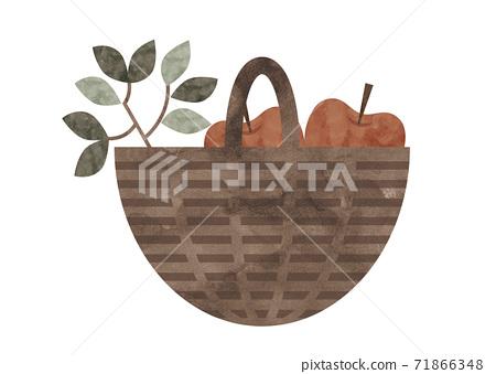 藤製籃子和蘋果的水彩插圖 71866348