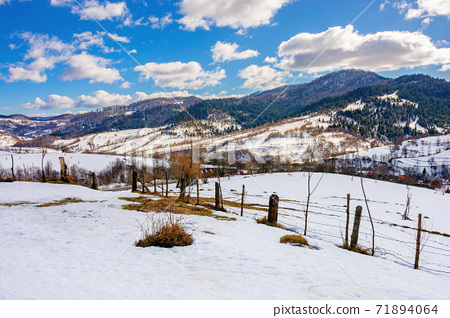 mountainous rural landscape on a sunny winter day. fields and trees on rolling hills covered in snow. fluffy clouds on the sky. beautiful carpathian landscape 71894064