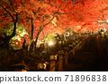가나가와 현 _ 大山寺의 라이트 업 _ 단풍 71896838