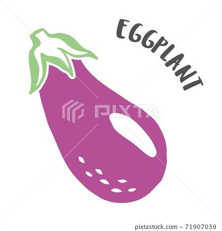 Eggplant hand painted with ink brush isolated on white background 71907039