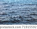 wave 71915592