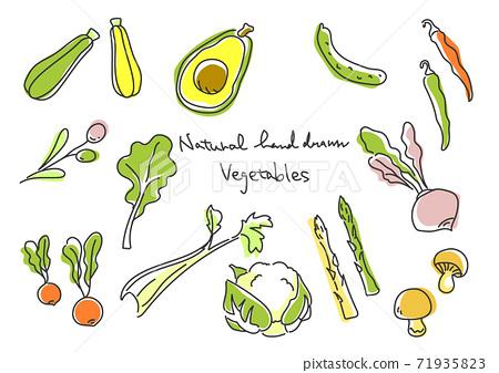 簡約時尚手繪插畫蔬菜套裝③ 71935823