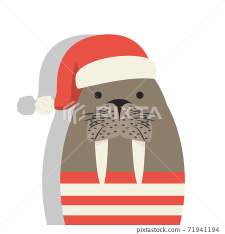 Cute walrus with red hat 71941194