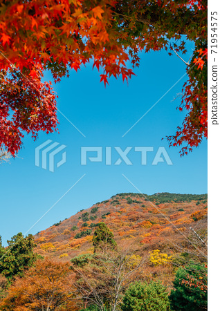 Autumn mountain with red maple at Beomeosa temple in Busan, Korea 71954575