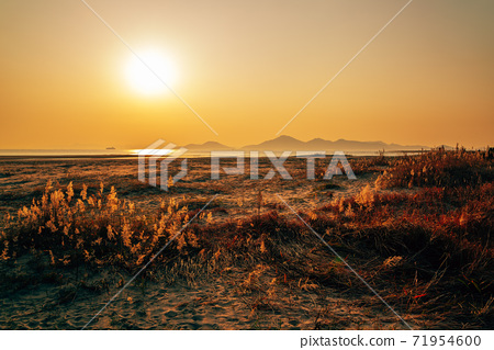 Sunset of Dadaepo Beach park in Busan, Korea 71954600